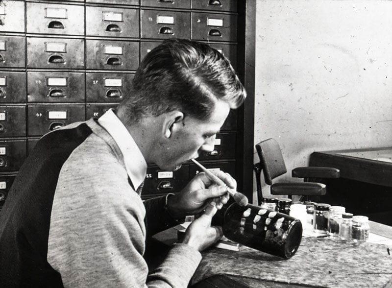 Photo of a man using the fingerprint brush powdering technique